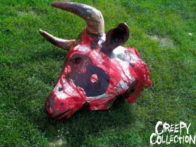 bloody bull head life size bloody bull head more details measures ...
