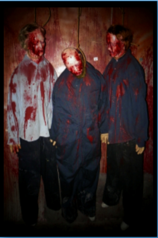 BUDGET Halloween prop Life Size 6 Body bundle