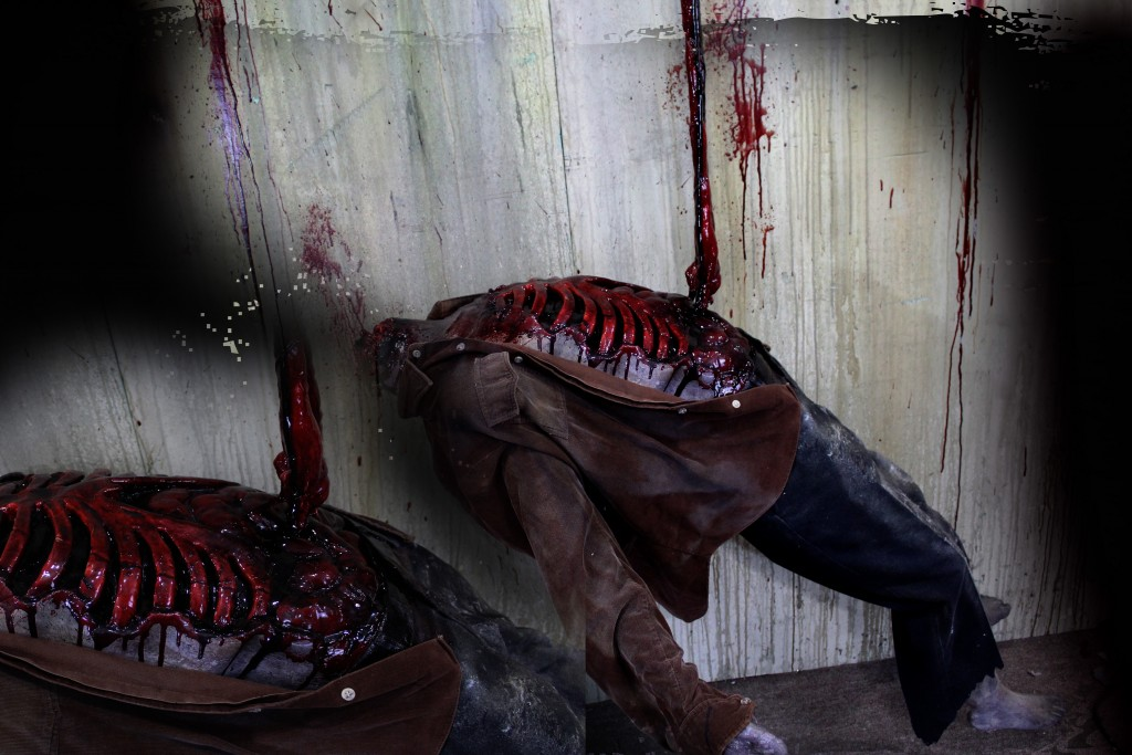 2016 ROTTEN HEADLESS SUSPENDED VICTIM