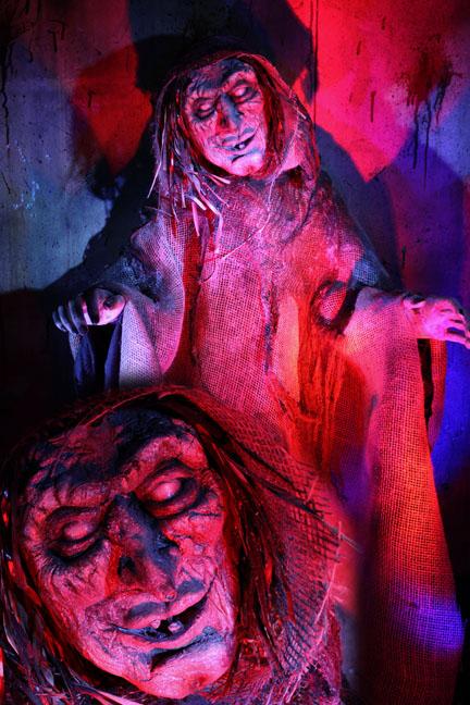 Terror Tot Brew-Ha ha Witch
